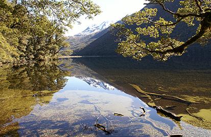 Lake Rere Guided Walk